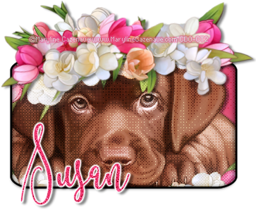 Susan-MC-Flowers-byFi